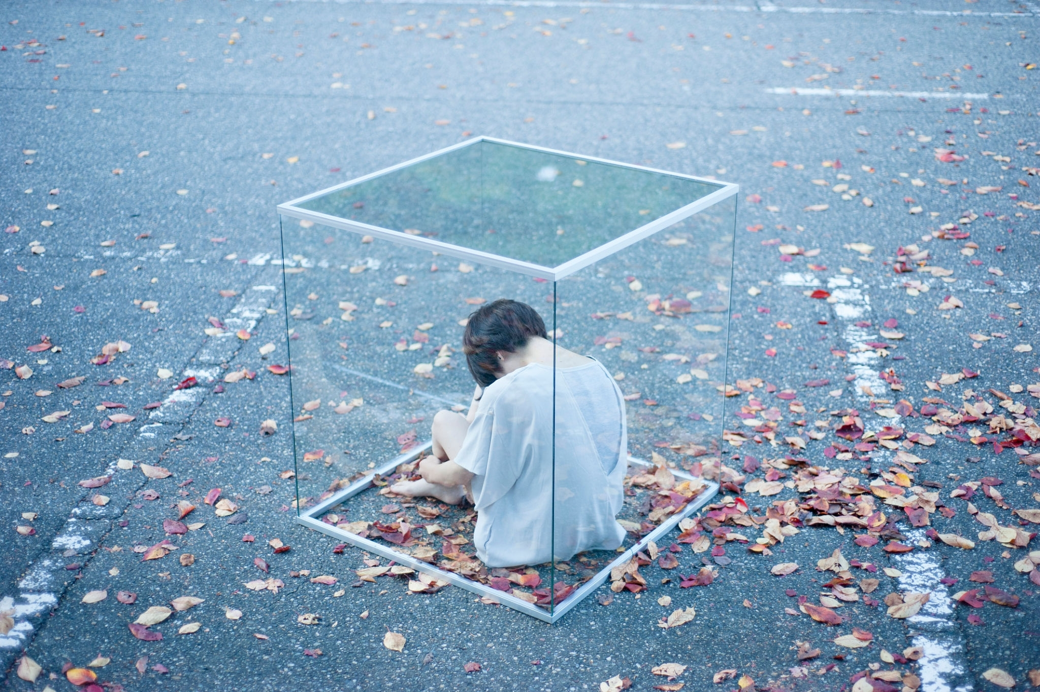 Portrait, One Woman Only, Glass Box, Fallen Leaves, Rear View